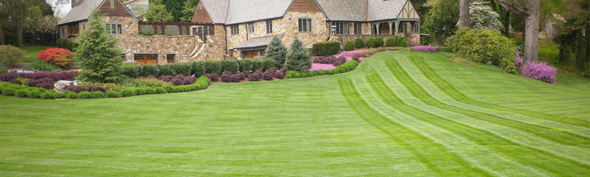Basf Better Turf Markets Lawn Care